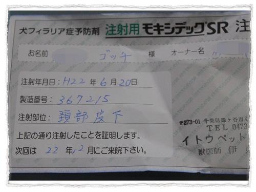dc062101(修整1) コピー1.JPG
