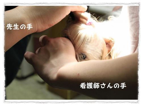 dc101401 コピー1.JPG