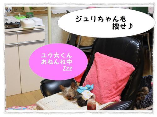 dc081004 コピー1.JPG